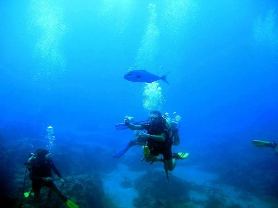 Naturablue Diving Center: Scuba Diving with NaturaBlue