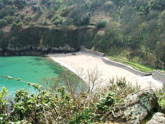 Fermain Bay: Not sand but tiny little shells.