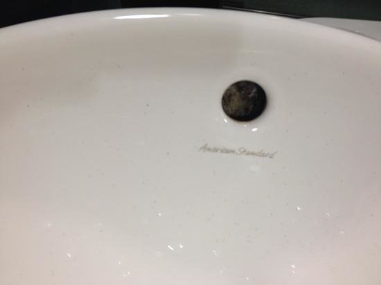 Crowne Plaza Fort Lauderdale Airport / Cruise Port: Dirty Bathroom