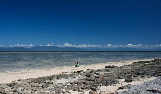Pullman Cairns International: Green Island