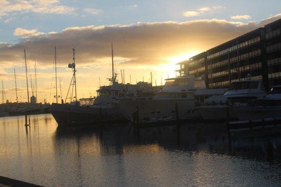 Sofitel Auckland Viaduct Harbour: Sun rise