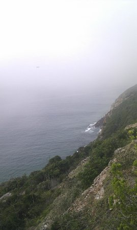 Robberg Nature Reserve: The seals are playing down below and you can hear them