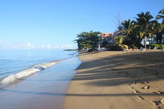 Rincon of the Seas Grand Caribbean Hotel: Rincon of the Seas - Beach