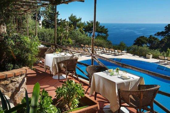 Hotel La Vega: Piscina