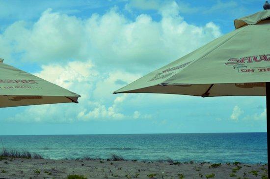 Shuckers on the beach, Jensen Beach FL