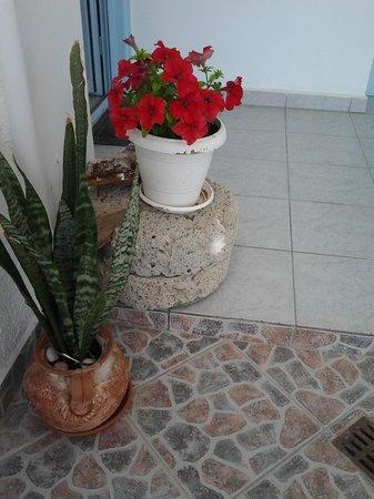 Hotel Aeolis: patio entrance