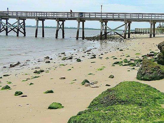 Old Brunswick County Jail Museum: low tide walk