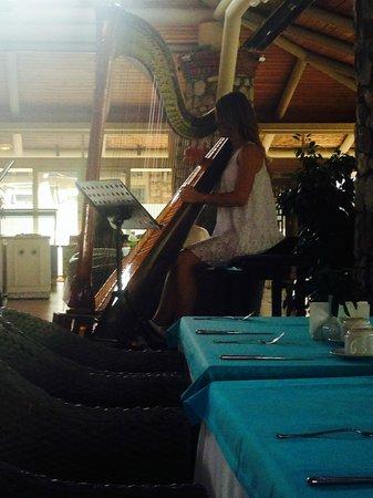 Marti Resort de Luxe : Breakfast harpist.