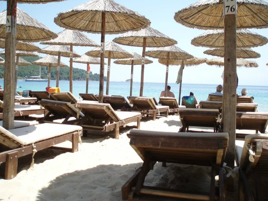 Koukounaries Beach : forest of parasols