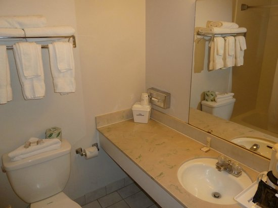 North Temple Inn : Bathroom