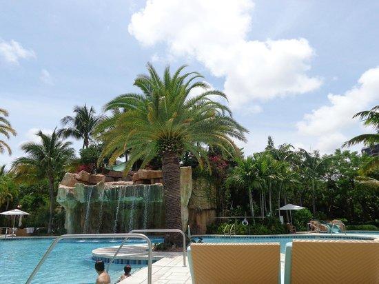 Turnberry Isle Miami, Autograph Collection : Laguna Pool