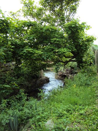 Pennasville Holidays: Stream at back of cottages