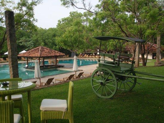 Amaya Lake: piscine