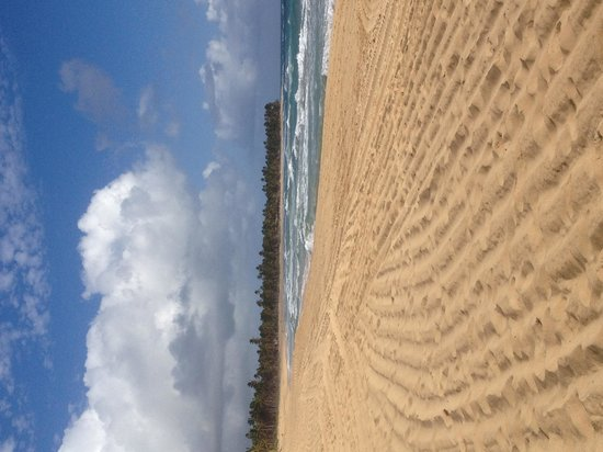 """Excellence Punta Cana : Left side of beach  """"rough"""""""