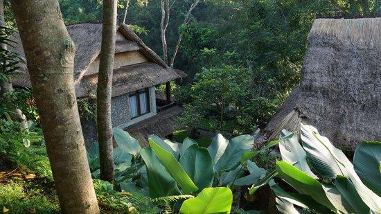 Hotel Tjampuhan & Spa: Room view