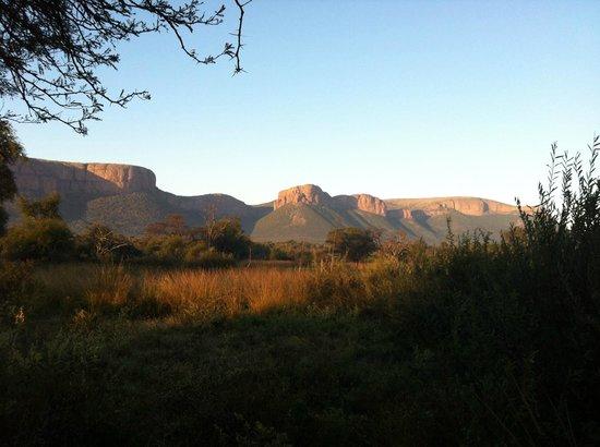 Marataba Safari Lodge: The fantastic view from my room