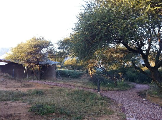 Marataba Safari Lodge : A view of the tents