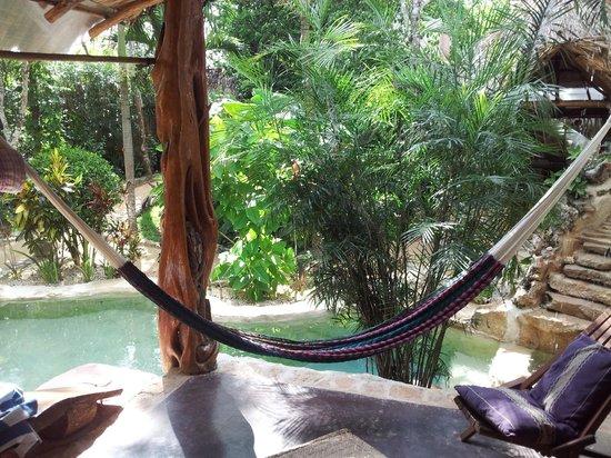 La Selva Mariposa: Patio
