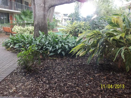 Ramada Kissimmee Gateway: View from ground floor motel room