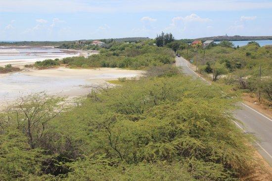 Cabo Rojo National Wildlife Refuge: Cabo Rojo Salt Flats - Observation Tower View