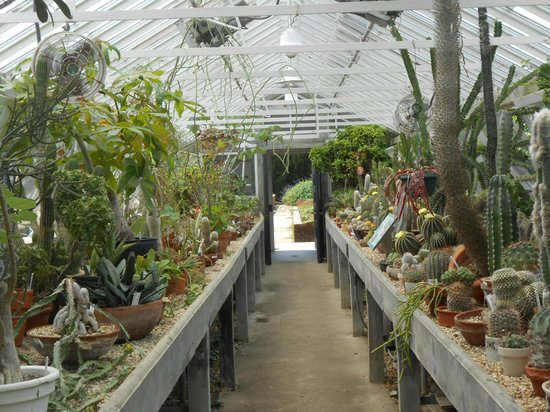 Botanical garden picture of new orleans city park new orleans tripadvisor City park botanical garden