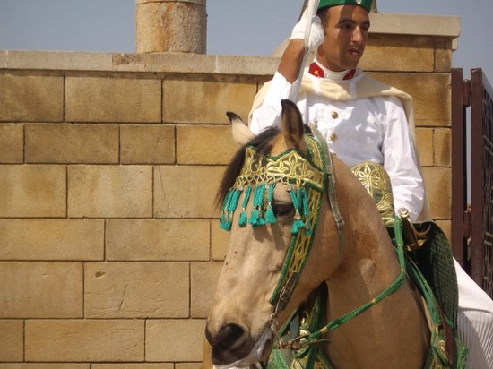 Morocco Discovery Holidays: Mohammed V Shrine Guard