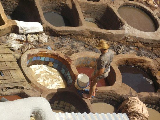 Morocco Discovery Holidays: Tannery