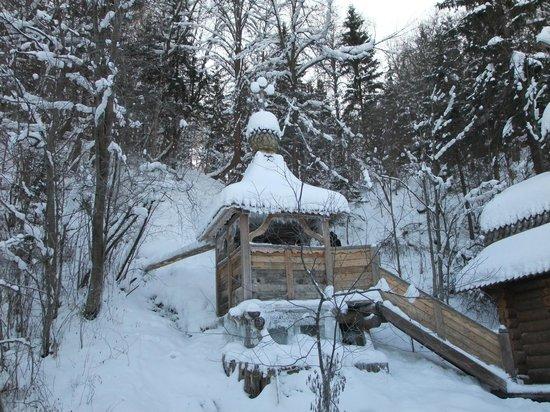 Sergiyev Posad, Rusia: зимний водопад