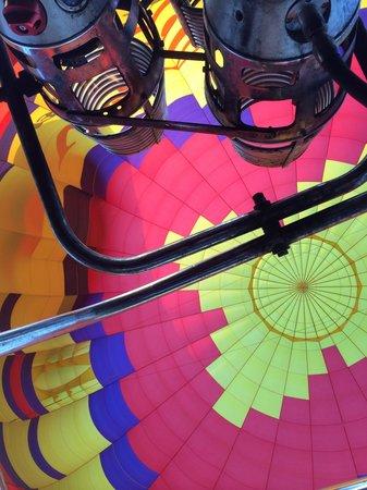 Vista Balloon Adventures: Looking up!