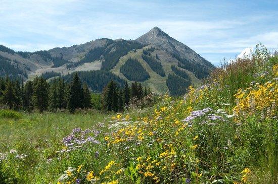 Crested Butte Mountain Resort: Mt. Crested Butte springtime
