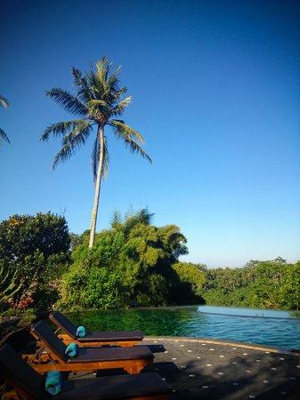 Tanah Merah Art Resort: piscine