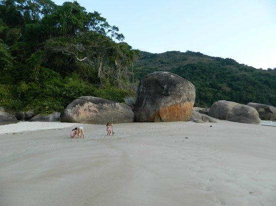Lopes Mendes Beach: Inmensidad Lopes Mendes