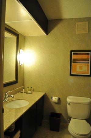 Doubletree Houston Intercontinental Airport : bathroom