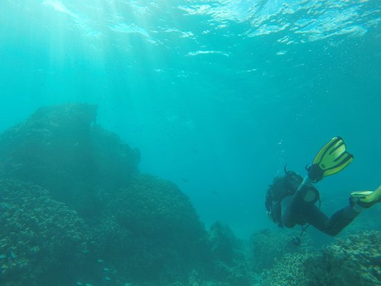 Le Taha'a Island Resort & Spa: Great place to learn how to dive