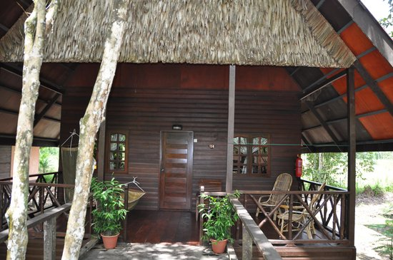 Bilit Rainforest Lodge: Bungalow
