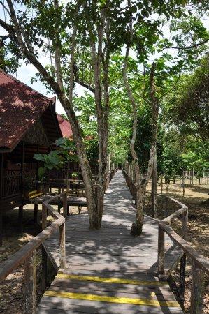 Bilit Rainforest Lodge: Accès bungalows
