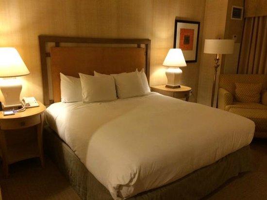 Hilton Santa Clara : Room
