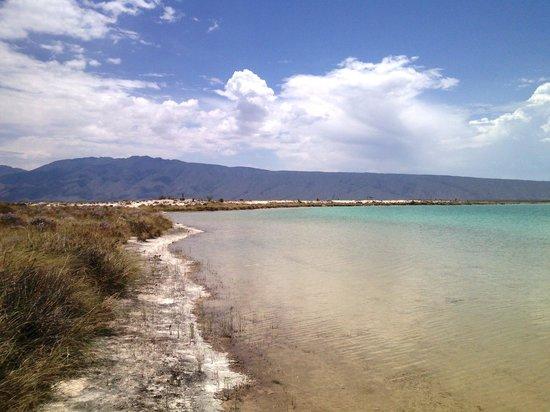 Cuatro Cienegas Reserve: Playas en el Desierto