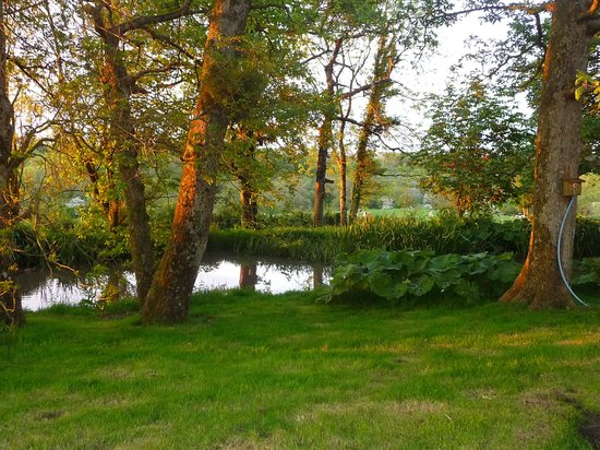 Knock Farm: Garden Pond