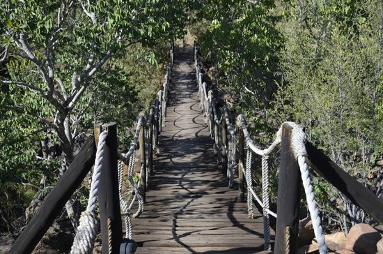 Makweti Safari Lodge: The bridge to rooms 1 and 2