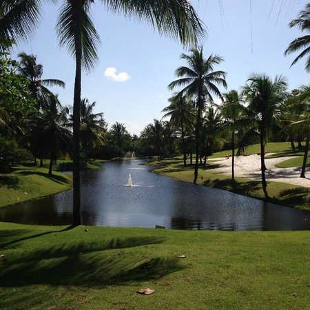 Tivoli Ecoresort Praia do Forte: Vista lago