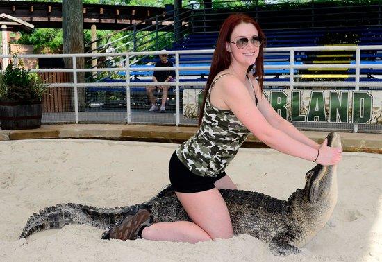 Gatorland: Gator Wrestlin'