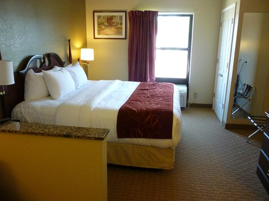 Comfort Suites Vincennes : Very comfortable bed