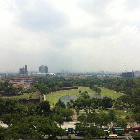 The Manila Hotel: Park view