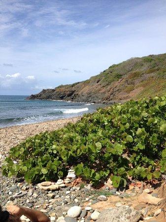 Las Cabezas de San Juan Nature Reserve: beach