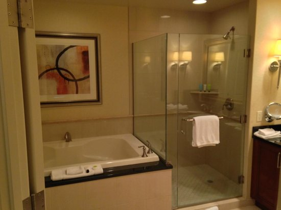 MGM Grand Hotel and Casino : Bath showing nice size shower