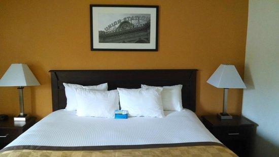 Days Inn & Suites Kansas City South: King Size Room