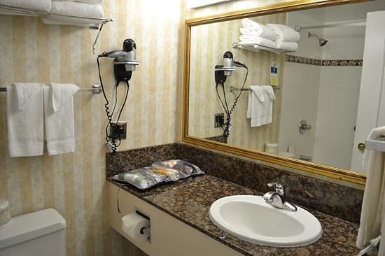 Quality Inn Downtown Inner Harbour: Bathroom