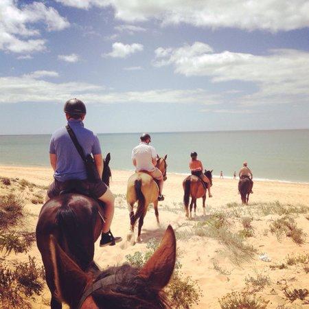 Centro Hipico Quinta da Saudade : The ride, guide and the horses were very nice!