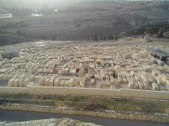 Vue panoramique de Jérusalem depuis le mont des oliviers (sans oliviers)
